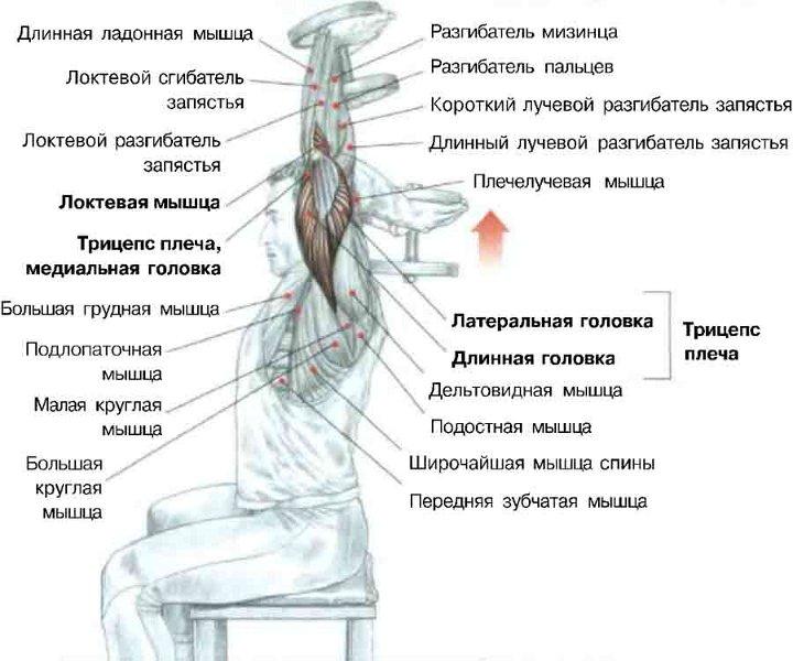 Тахограф Kienzle 1318 / 1324: инструкция по эксплуатации и установке