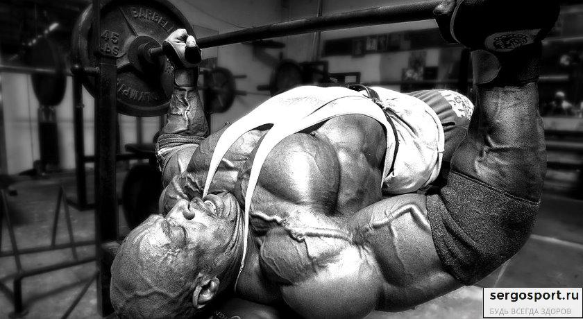 программа тренировки на грудные мышцы
