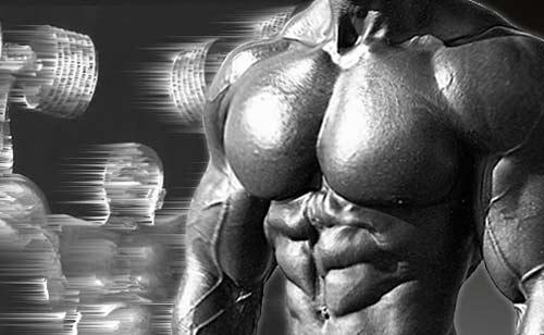 Программа для тренировки грудных мышц на массу