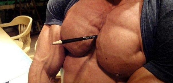 Упражнения для накачки грудных мышц