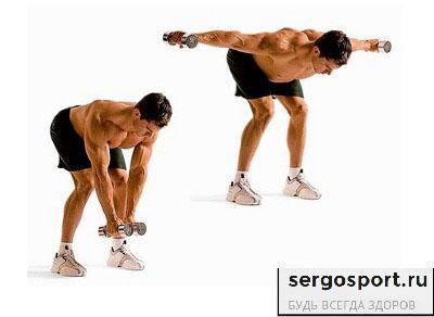 развод гантелей через стороны для мышц плеча