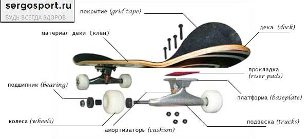 скейтборд для начинающего заниматься ребенка