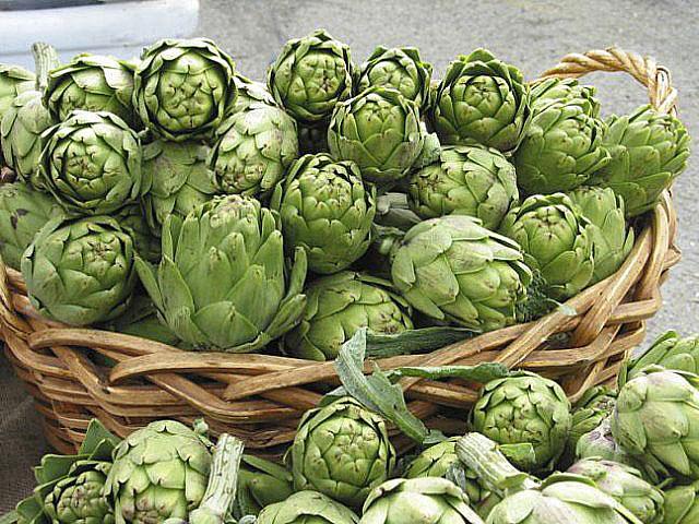 артишок средиземноморский овощь для здоровья