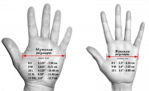 размеры выбора перчаток для фитнеса