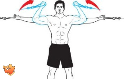 нестандартные упражнения на бицепс