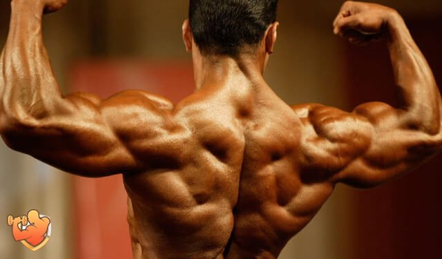 vidy bodybuildinga blog Sergey Tyapkina